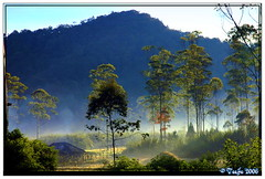 Ranca Upas In The Morning (T   J ) Tags: bandung soe naturesfinest ciwidey supershot nikonstunninggallery impressedbeauty