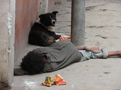 homeless street boy in Kathmandu Nepal (Brian A Petersen) Tags: poverty street nepal boy dog trash sleep brian homeless poor 2006 kathmandu bp katmandu nepali petersen bpbp brianpetersen brianapetersen