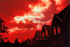 Bloody Village (ale2000) Tags: houses windows red sky holland color colour netherlands clouds landscape evening xpro cross crossprocess cosina nederland row bathed netherland photowalk process neighbours olanda fujisensia100 betti koogaandezaan bronly favcol koogadzaan 0x8b2b23