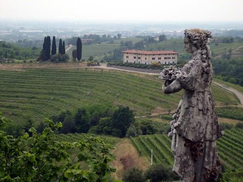 Friuli 051 Cantine Aperte - Abbazia di Rosazzo