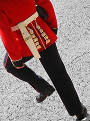 Coloring the Troops (ElectricSprout) Tags: birthday uk red london topv111 fermidaily soldier uniform guard royal saturday parade british attention royalty week47 troopingthecolour score40