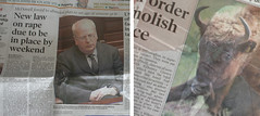 """the subtle humour of """"the irish times"""""""