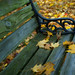 Bench at a cemetary last fall - by garyfgarcia