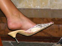 fraheel (pucci.it) Tags: snake heel mules femalefeet