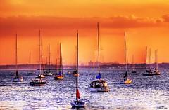 Aligned  (and tearing thru) (inanutshell) Tags: new york sunset skyline marina d50 boats us nikon manhattan rye will shamik hdr inanutshell tthdr nikonstunninggallery stickinup abigfave