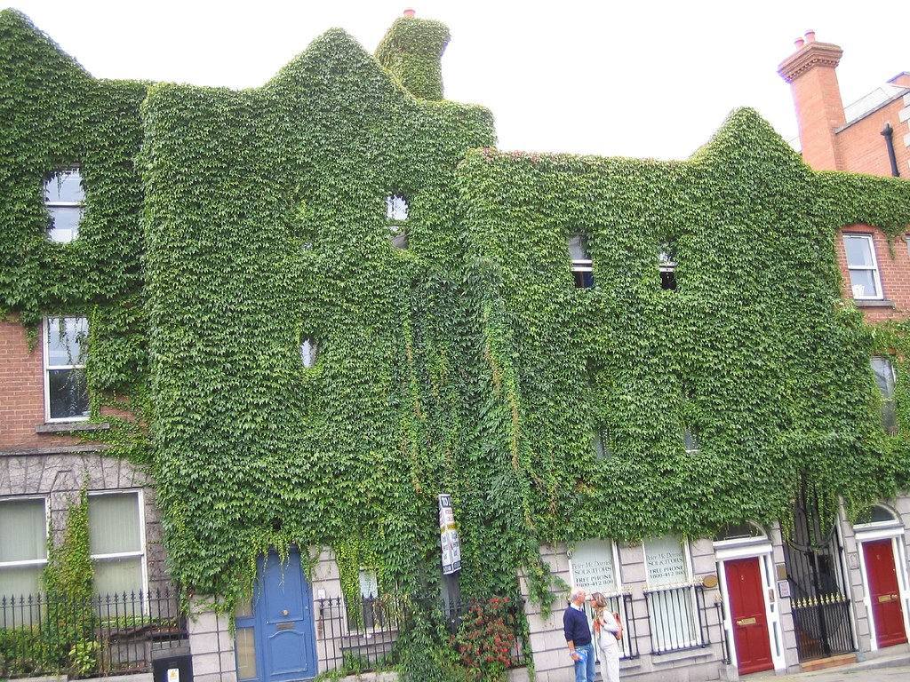 PLANT EATING A BUILDING