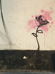 flower (johanna) Tags: copyright streetart flower stencil hackney 4l stoke newington opyight