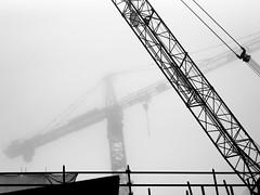 Rotterdam (Nico_1962) Tags: urban stad rotterdam nederland leica teleelmarit bw zwartwit rangefinder manualfocus primelens thenetherlands vintagelens leicam m240 mist fog