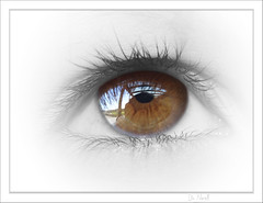 Brown eye (Dirk Delbaere) Tags: iris fab brown macro reflection eye texture look closeup reflecting mirror see reflex search eyes eyelashes olympus reflect eyeball frame p mooi eyelash reward pupil lash oog window2thesoul windowtothesoul olympuse500 greatphotographers supershot 35mmmacro35 25faves abigfave impressedbeauty superbmasterpiece theunforgetablepictures backnext dirkdelbaere