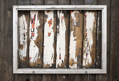 framed - finsbury park (chirgy) Tags: wood london framed frame slats aluminium harringay finsburypark manorhouse harringey clinkerbuilt fujifilmx100s