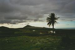 Lanzarote, 11.02.2015. (clasker) Tags: analog 35mm lanzarote canarias ishootfilm fujifilm canaryislands olympusmjuii fujicolorsuperia400 filmisnotdead