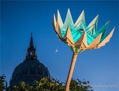 _KEO1520 A Blumen Lumen Flower for City Hall (misterken) Tags: sanfrancisco centennial pentax cityhall lightshow civiccenter sanfranciscocityhall dijemry misterken justpentax k5iis blumenlumen