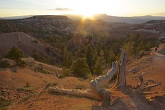 SuNRiSe (Tè Bwa Dlô) Tags: park bridge sunset wild inspiration nature america point landscapes natural canyon national bryce
