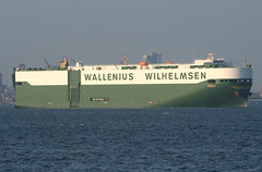 PORGY - WALLENIUS WILHELMSEN - In New York, USA. July, 2015 (Tom Turner - SeaTeamImages / AirTeamImages) Tags: nyc usa newyork green water port bay harbor marine unitedstates harbour transport vessel pony maritime transportation statenisland bigapple channel narrows roro waterway carcarrier porgy autocarrier rollon walleniuswilhelmsen tomturner rolloff vehiclecarrier
