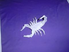 Scopion (Willian Pessoa) Tags: scorpion mago medusa lang voyer rober elefante anibal dragão escorpião