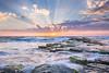Good morning from Sydney! (WT Journal) Tags: australia nsw sydney turimetta beach sunrise