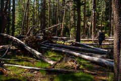 Off trail along the San Joaquin (speedcenter2001) Tags: anseladamswilderness sierranevada sierra sierraphile highsierra california mountains wilderness hiking outdoor backpacking backcountry