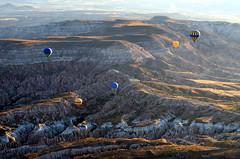 Cappadocia (ertugrulderya) Tags: türkiye turkey cappadocia kapadokya balloon landscape photographer photography naturephotography naturelovers natgeo nationalgeopraphic urgup peribacaları hotairballon london paris milan milano moscow nevşehir