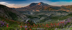 Loowit Sunrise (Stephanie Sinclair) Tags: cascaderange mtsthelens nationalvolcanicmonument usdepartmentoftheinterior washingtonstate findyourpark mountains pano seattleempress stephaniesinclairphotography sunrise volcano nps canon resist