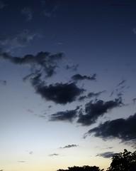 IMG_3613 Venus 03Feb2017 (N3T0V) Tags: sol sun atardecer sunset chiapas méxico astronomia astronomy astrofoto astrophoto talkingtothemoon chiapasmeteo cielo sky planet planetas venus