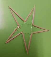 Toothpick Star After Water Absorption (judy_jowers) Tags: science children water absorption activity kinetic art dinner table party cheap