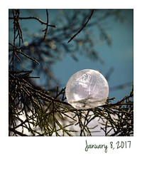 Ice Bubble (jeanne.marie.) Tags: instant cold winter frozen icebubble frozenbubble 365the2017edition 3652017 day8365 8jan17