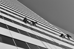 Window Washers (brian_barney9021) Tags: window washers people skyscraper building black white nikon d3200 35mm lens tall workers windows pattern monochrome street photography