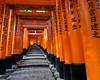 Fushimi Inari Taisha XXV (Douguerreotype) Tags: japan kyoto buddhist temple shrine red vermilion torii gate