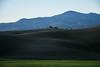 Peace in Val d'Orcia (Antonio Cinotti ) Tags: landscape paesaggio toscana tuscany italy italia siena hills colline campagnatoscana nikond7100 nikon d7100 valdorcia pienza monteamiata amiata