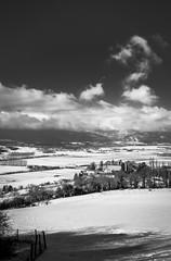 Château de Bavois (DomSwiss) Tags: domswiss nature nuages nuage noirblanc nb ciel hiver neige château vaud suisse switzerland