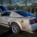 The Dragon Mustang (Cars & Coffee of the Upstate)