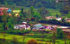 miniature village (akshaypatil™ ® photography) Tags: photography miniature sony dalhousie tiltshift hx50v