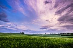 Lumière printanière (Fabrice Le Coq) Tags: blue cloud green vert bleu nuages paysages couleur fabricelecoq