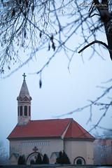 A small chappel (v.Haramustek) Tags: osijek osjekobaranjskaupanija croatia hr chappel curch cold winter white tree freezing freeze december religion spirituality building arhitecture god christianity