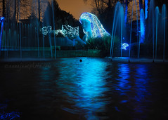 Ice Goddess (.annajane) Tags: atlanta botanicalgardens georgia sculpture fountain reflection blue longexposure woman statue water night dark light gardenlights holidaynights