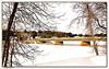 Blanc-White (Huguette T.) Tags: hiver neige pont arbres rivière blanc paysage forêt