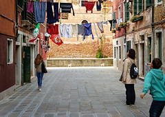 Which flag to salute?! (Tigra K) Tags: venice veneto italy it 2014 city color fabric flag plant road ruin vine wall