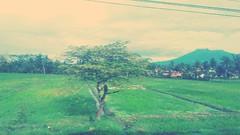 #Malang east java (irfanahmad4) Tags: malang
