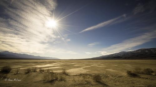 Sun over the Desert