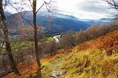 Glen Lyon Woodland Walk (eric robb niven) Tags: ericrobbniven scotland glenlyon walking hillwalking hills perthshire winter