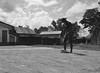 (RM Ampongan) Tags: life street city photography rice philippines dry human sur activity region bicol palay camarines iriga nagbibilad