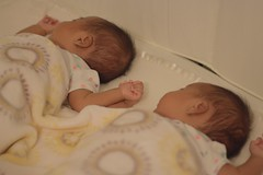 Twins holding hands. Canon 70D 50mm 1.8STM lens (charlieduran7) Tags: twins babies babypictures twinbabies