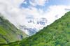 DSC_8373 (A.K.S - Eye) Tags: wild nature trekking himalaya hemkund sangam joshimath valleyofflowers bhagirathi govindghat uttarakhand alaknanda rudraprayag ghangharia nikond7000 ajitabhsharma devprayaga