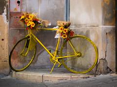 Bicicleta Amarilla (Kepa_photo) Tags: bicicleta amarillo ecológia kepaphoto