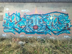 RIP Elvis dog by Abakus (Night Steppa) Tags: syk blt abakus ohk aod upsk ubk 377k kscrue