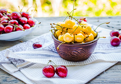 fresh red and yellow cherry in a plate,healthy snack, summer, selective focus (harmonyandtaste) Tags: wood red summer food color tree nature closeup fruit garden cherry table dessert wooden leaf juicy healthy berry cherries raw natural sweet background rustic group tasty bowl fresh health snack vegetarian growing organic diet agriculture freshness ripe nutrition selectivefocus vitamin sweetcherriesvegan