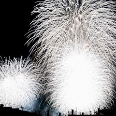 2015-08-04 Fireworks (kuma_photography) Tags: japan fireworks  yokohama kanagawa