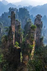 Zhangjiajie - China (lucien_photography) Tags: china travel mountain nature rock forest landscape asia avatar unescoworldheritagesite unesco pandora soe chine hunan zhangjiajie pinnaclerock landscapephotography dayong wulinyuan zhangjiajienationalpark