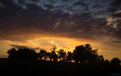 Somewhere on the road... (Cecilia A) Tags: sunset coucherdesoleil pordosol atardecer tramonto canon canont3i canon600d ceciliaa ©ceciliaa