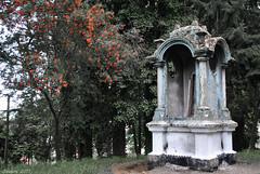 Time (Javiera C) Tags: chile puertovaras estructura structure old antiguo viejo abandoned abandonado decolorado discolored vegetación vegetation nostalgia